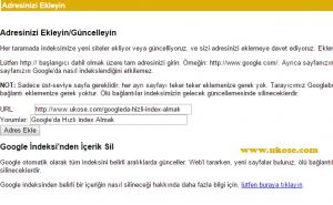 google_hizli_index_alma